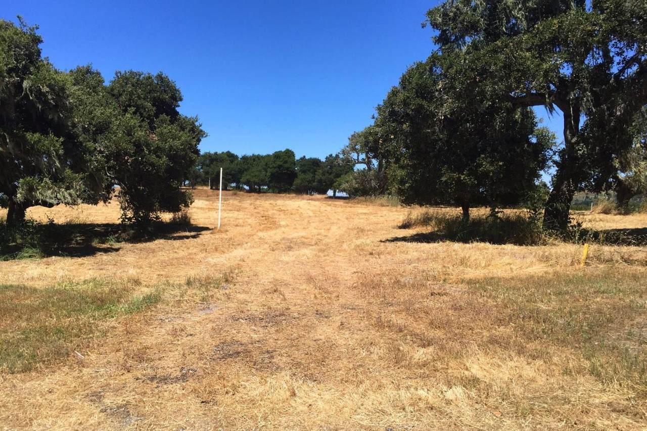 8375 Monterra Views (Lot 155) - Photo 1