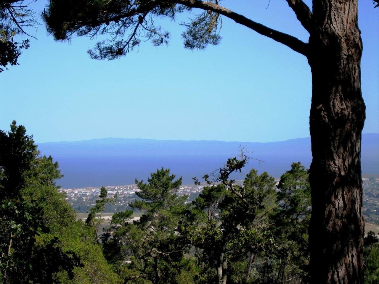 7870 Monterra Oaks - Photo 1