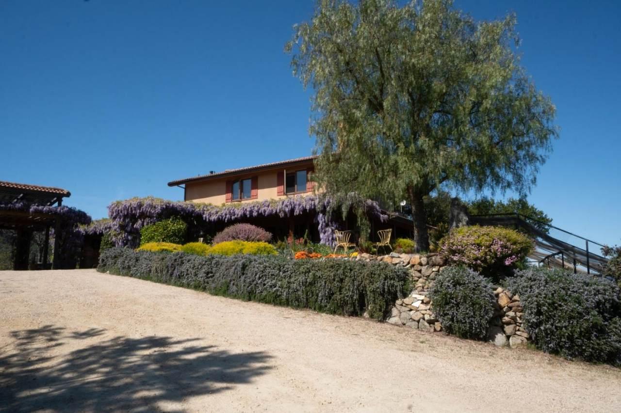 21575 Parrott Ranch Rd - Photo 1