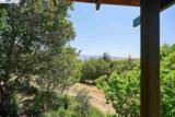 16910 La Selva Drive - Photo 24