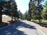 800 Golf Club Cir - Photo 17