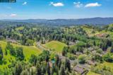 1449 Emmons Canyon Drive - Photo 40
