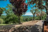 517 Spotted Owl Ct - Photo 36