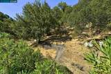 4412 Terra Granada Dr 2A - Photo 38