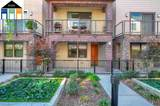 505 Stacatto Place - Photo 2