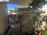 29138 Delgado Road - Photo 35