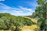 1850 Bear Tree Rd - Photo 32