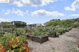 1200 Brickyard Way 101 - Photo 37