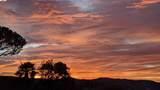1626 Calera Creek Heights Dr - Photo 40