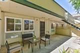 3015 Los Prados Street 113 - Photo 5