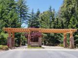 365 Henry Cowell Dr - Photo 2