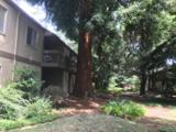 505 Cypress Point Dr 96 - Photo 10
