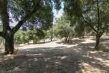 20 Arroyo Sequoia - Photo 19