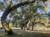 11 Arroyo Sequoia - Photo 3
