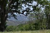13 Long Ridge Trl - Photo 29