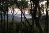 13 Long Ridge Trl - Photo 4