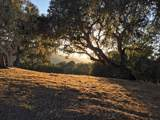 8345 Monterra Views (Lot 151) - Photo 2