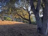 8345 Monterra Views (Lot 151) - Photo 4
