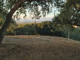8345 Monterra Views (Lot 151) - Photo 8