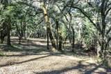 35000 Robinson Canyon Rd - Photo 5
