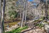 46151 Clear Ridge Rd - Photo 9
