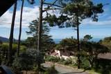 24190 San Pedro Ln - Photo 3