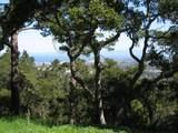 7870 Monterra Oaks - Photo 6