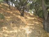 4800E San Juan Canyon Rd - Photo 13