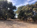 332 San Benancio Rd - Photo 12