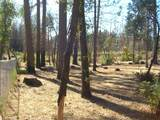 6760 Moore Rd - Photo 3