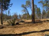 6760 Moore Rd - Photo 4