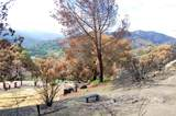 17463 Via Cielo - Photo 10