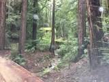 24140 Booker Creek - Photo 1