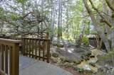 1143 Shelter Creek Ln - Photo 33