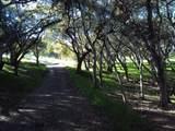 0 Monterra Ranch (Lot 1) - Photo 5