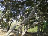 7415 Alturas Ct - Photo 8