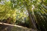 1753 Glenwood Dr - Photo 69