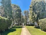 601 Mendocino Way - Photo 24