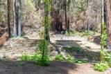 11780 Clear Creek Rd - Photo 1