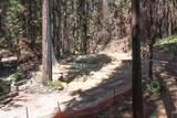 11780 Clear Creek Rd - Photo 4