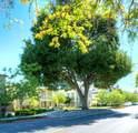 110 Minaret Ave - Photo 8