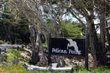 36 Pelican Pt - Photo 2