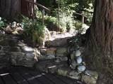 13550 Bear Creek Rd. Rd 12 - Photo 3