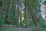 420 Henry Cowell Dr - Photo 44