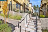 532 Ryan Terrace - Photo 35