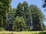 365 Henry Cowell Dr - Photo 13