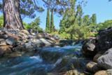 5075 Cribari Bluffs - Photo 23