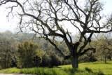 24 Pronghorn Run - Photo 5