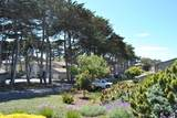 122 Cypress Grove Ct - Photo 19