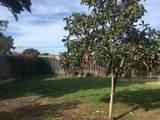 1135 Madera Ct - Photo 26
